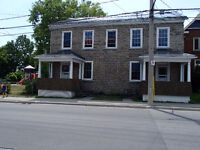 Beautiful,  Redesigned  Stone Home, Downtown, Highland Associate