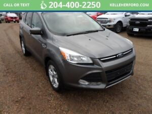2014 Ford Escape SE1.6L Sync