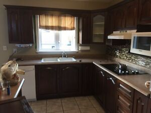 Refacing your cabinet at one lovely price St. John's Newfoundland image 5