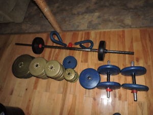 Weights and other Exercise Equipment