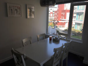 Roomate wanted to share 2 BR Apt in Richmond