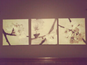 Three canvas pictures
