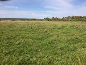 Reduced!!112 acres bare land