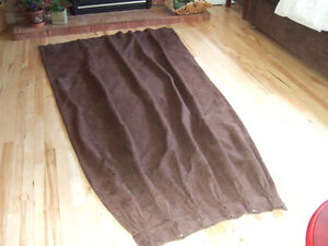 A PAIR OF LINED CURTAIN'S $10