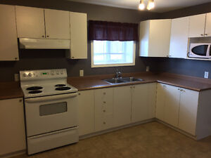 Two Bedroom Apartment in Southlands