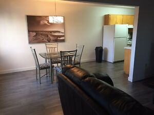 FULLY FURNISHED EXECUTIVE CONDO - LOCALLY OWNED