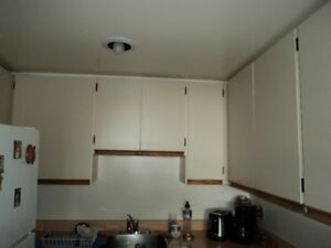 Kitchen Cabinets  FREE