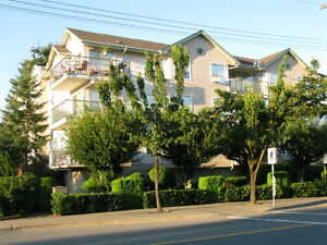 Modern, clean Chilliwack Condo - modestly priced @ $167,900