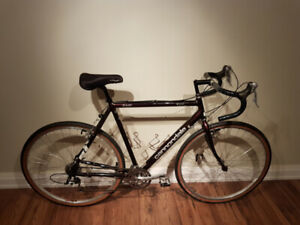 Cannondale T700 Loaded Touring Bike