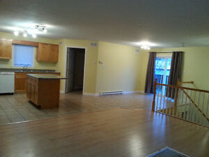 newly painted duplex for rent 3 bedroom