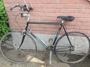 Vintage Bianchi Racing Bike