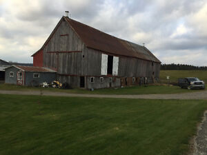 BARN REMOVAL - FULL INSURANCE - FREE OF CHARGE Sarnia Sarnia Area image 10