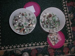 Bay Of Fundy Sea Glass