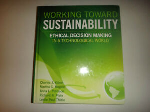 working toward sustainability ethical decisionmaking in a technological world