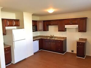 JUST REDUCED 10K!! FULLY RENOVATED WITH OFF-STREET PARKING!! St. John's Newfoundland image 3