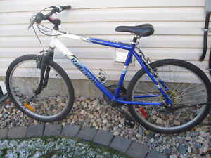Raleigh Ambush 21 speed mountain bike