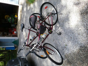 Raleigh bikes for sale