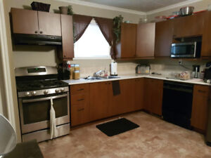 Updated 3 Bedroom House Dec 1 or Jan 1  - Close to College