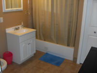 Clean, Renovated 1 bedroom $650