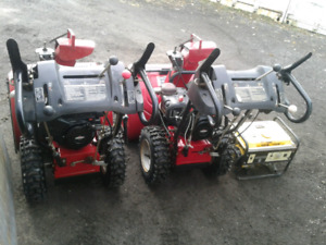 SMALL ENGINE REPAIR/LICENCED (*only 3-5 days wait*) SNOWBLOWER,+