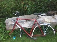 Vintage bike frame