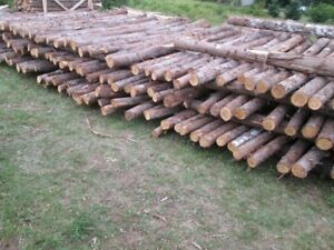 1825-pieces-cedar-fence-posts-8ft-prices-$3-to-$5-each