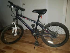 """Velo enfant 14"""" Iron Mountain bike for children"""
