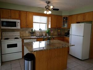 Single home in , Waterloo, Close to bus route, Green Space Kitchener / Waterloo Kitchener Area image 4