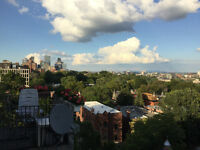 Apartment with a view for Oct. 1st // Westmount / Atwater metro