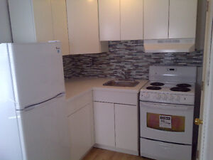 Modern and charming Smiths Falls waterfront bachelor apt.