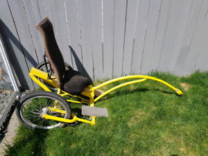 Special needs Chariot Bike Attachment