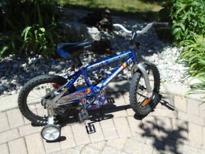 Bicycle Boys 16 in Speedster in excellent condition