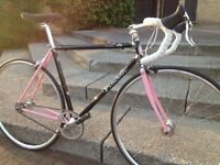 Vintage bike limited edition