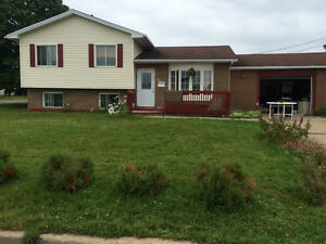 3 level split house cheaper than a semi, priced for quick sale