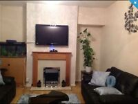 3 bedroom council house for swap only