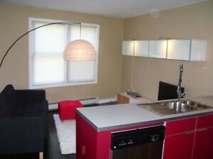 May 1. Beautiful 3 Bedroom, Fully Furnished, South End Halifax.
