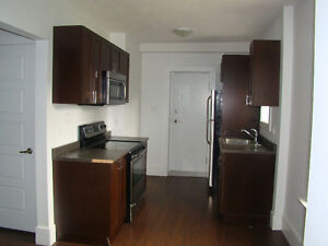 Gorgeous Renovated 2 Bed Suite Insuite Laundry Downtown!