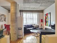 Perfect apartment - Quartier Latin - Montreal