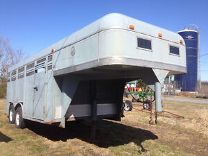 Livestock / horse trailer & equipment