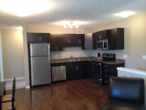 Beautiful 2 Bedroom Furnished Condo Available November 1!!