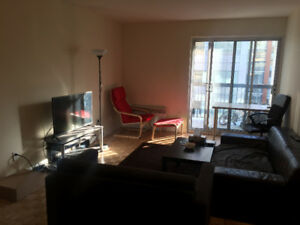 Sublease 3 1/2 Apartment in Downtown