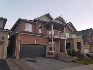 Milton - Beautiful Detached Home for rent