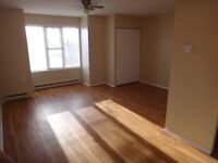 Newly Renovated Bachelor in heart of downtown Kingston