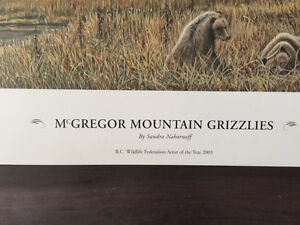 Mcgregor mountain Grizzlies print Prince George British Columbia image 2