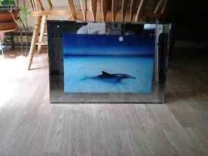 Beautiful  dolphin  mirror