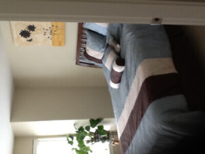 Furnished 2 floor house to share with another female roommate