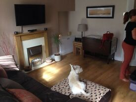 2 Bed Terraced Cottage To Let