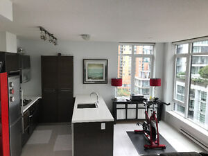 Modern Executive 1 Bedroon Apartment for rent