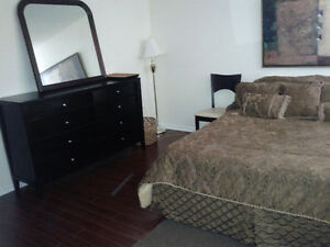 Rent  Furnished room, spacious,clean,quiet, Professionals Only
