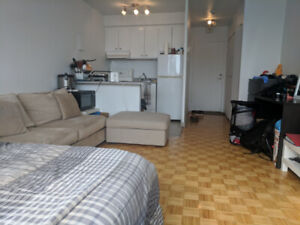 1 1/2 Studio - Utilities Included - Close to Metro and Grocery